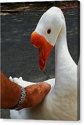 Geese Canvas Print - A Magical Moment Digital Art by Ernie Echols