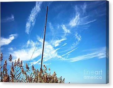 Canvas Print featuring the photograph A Mast Appears by John Rizzuto
