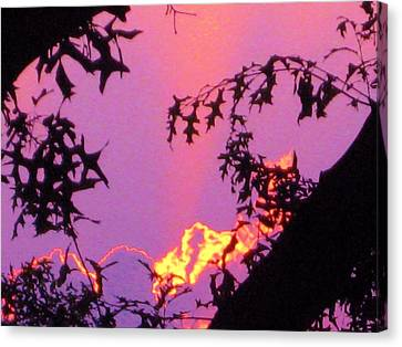 Canvas Print featuring the photograph A Mid-summer Sunset by Susan Carella