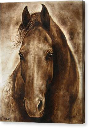 A Misty Touch Of A Horse So Gentle Canvas Print by Paula Collewijn -  The Art of Horses