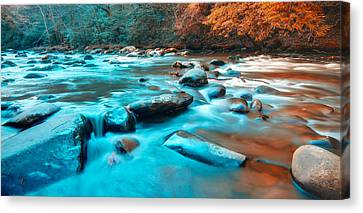 A Moment In The Great Smoky Mountains Canvas Print by Rich Leighton