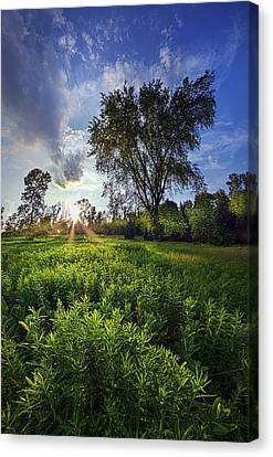 A Moment Or Two Canvas Print