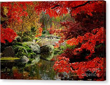 A Most Beautiful Spot Canvas Print by Jon Holiday