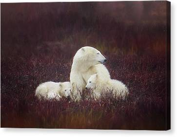 A Mother's Love Canvas Print by Debby Herold