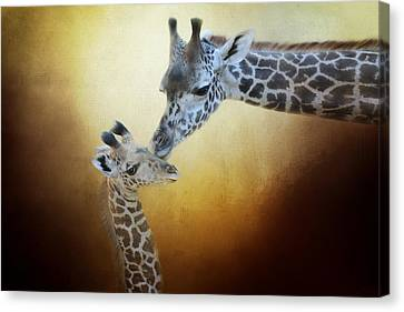 Sweet Touch Canvas Print - A Mother's Love by Lynn Bauer