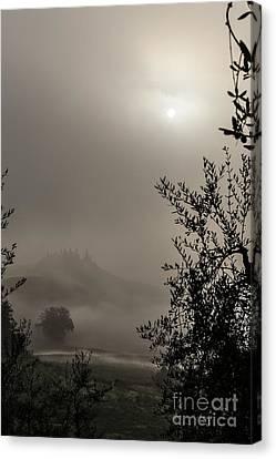 Alberi Canvas Print - A Mysterious Foggy Morning by Luigi Morbidelli