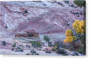 Canvas Print featuring the photograph A Natural Abstract by John M Bailey