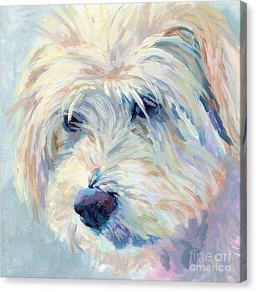 Pet Canvas Print - A Natural Blonde by Kimberly Santini
