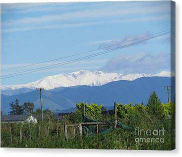 A New Fall Of Snow Canvas Print by Joyce Woodhouse