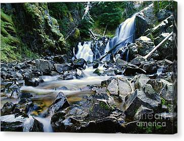 A New Way To The Waterfall  Canvas Print by Jeff Swan