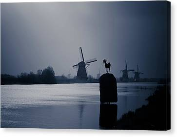 A Nice View Canvas Print