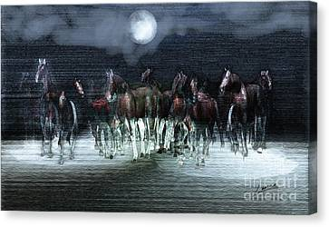 A Night Of Wild Horses Canvas Print