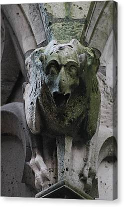 Canvas Print featuring the photograph A Notre Dame Griffon by Christopher Kirby