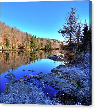 Canvas Print featuring the photograph A November Morning On The Pond by David Patterson