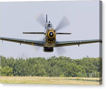 A P-51 Mustang Flies By At East Troy Canvas Print by Rob Edgcumbe