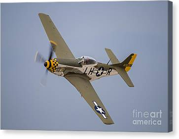 A P-51 Mustang Flies By At Waukegan Canvas Print by Rob Edgcumbe
