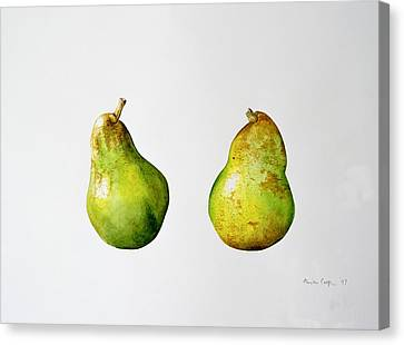A Pair Of Pears Canvas Print by Alison Cooper