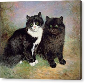 A Pair Of Pussy Cats Canvas Print by Lilian Cheviot