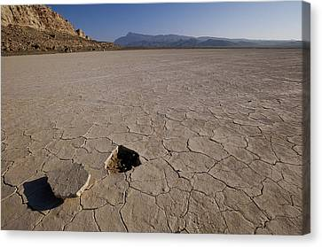 A Parched Lake Bed Below Notch Peak Canvas Print