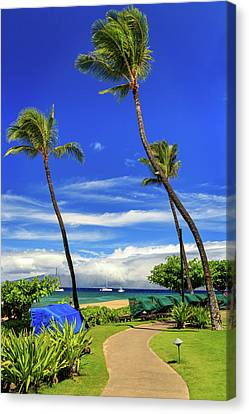 Canvas Print featuring the photograph A Path In Kaanapali by James Eddy