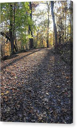 Ewing Canvas Print - A Path Less Traveled by Mark Crepp