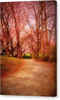 A Path To Fantasy - Holmdel Park Canvas Print by Angie Tirado