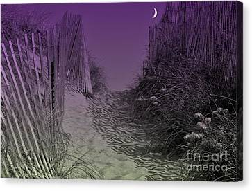 A Path To The Atlantic Canvas Print