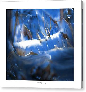 A Peace Of Winter Canvas Print