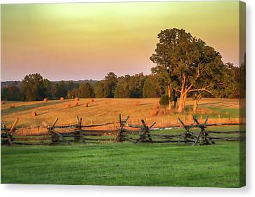 A Peaceful Manassas Canvas Print by Tom Weisbrook