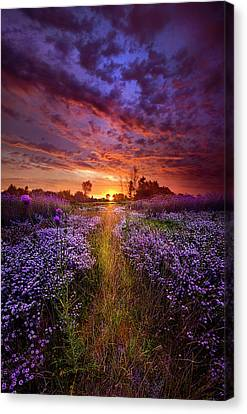 A Peaceful Proposition Canvas Print by Phil Koch