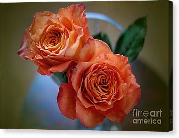 Canvas Print featuring the photograph A Peach Delight by Diana Mary Sharpton