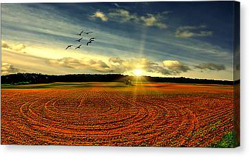 A Perfect Day Canvas Print by Tom York Images