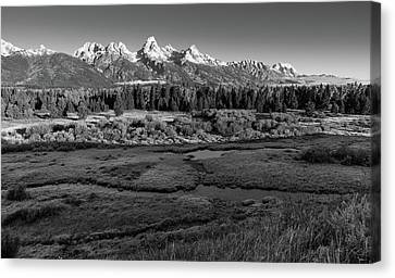 A Perfect Frosty Morning In Grey Scale Canvas Print