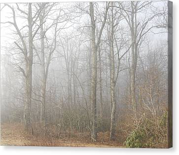 Canvas Print featuring the photograph A Perfectly Beautiful Foggy Morning by Diannah Lynch