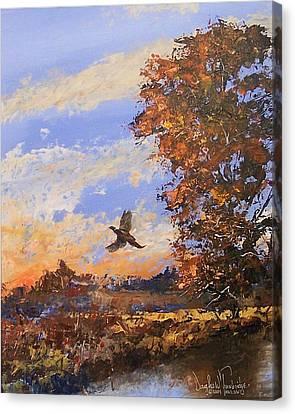 A Pheasent At Sundown Canvas Print by Douglas Trowbridge