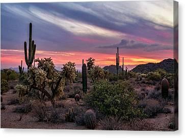 Canvas Print featuring the photograph A Pink Kissed Desert Sunset  by Saija Lehtonen