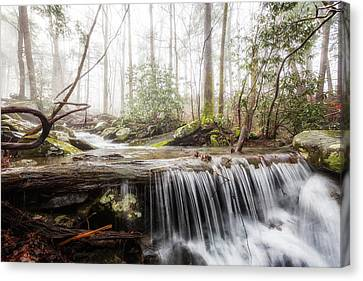 A Place To Dream Canvas Print by Everet Regal