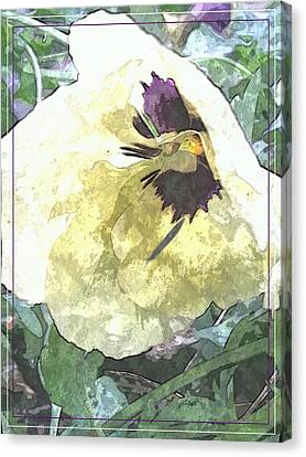 A Pop Of Pansy Canvas Print