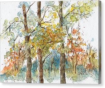 A Poplar Treeo Canvas Print by Pat Katz