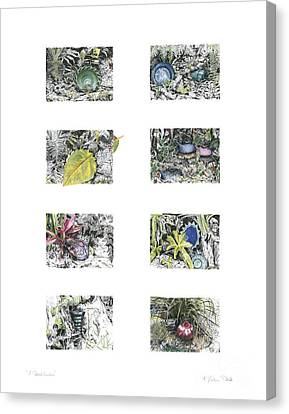 Canvas Print featuring the drawing A Potters Garden by Kerryn Madsen-Pietsch