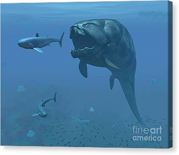 Feeding Canvas Print - A Prehistoric Dunkleosteus Fish by Walter Myers
