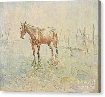 A Prisoner Of War. War Horses Of World War One Canvas Print