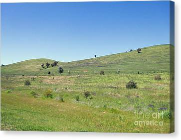Canvas Print featuring the photograph A Quiet Interlude by Linda Lees