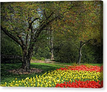 Canvas Print featuring the photograph A Quiet Place by John Rivera