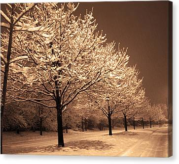 A Quiet Snowy Night Canvas Print by Jackie Reitsma