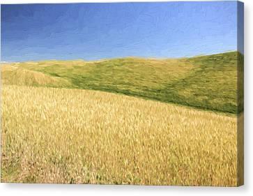 A Quiet Walk II Canvas Print