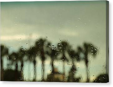 A Rainy Day Canvas Print by Christopher L Thomley