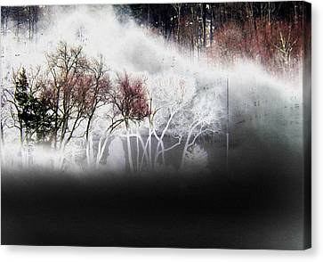 A Recurring Dream Canvas Print