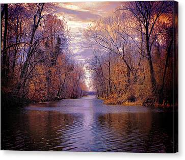 A Reelfoot Bayou Canvas Print by Julie Dant