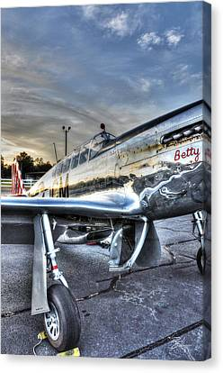 A Reflective Mustang Canvas Print by David Collins